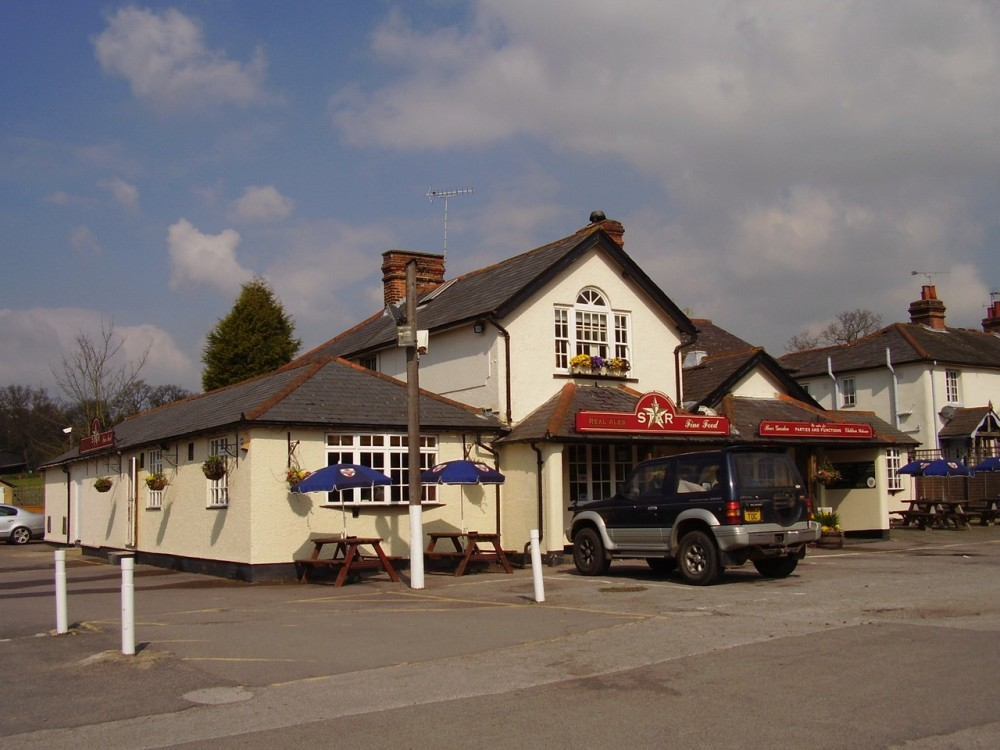 M25 Junction 9 Leatherhead dog walk and dog-friendly pub, Surrey - Dog walks in Surrey