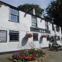 A47 dog walk and dog-friendly pub, Leicestershire - Leicestershire dog walk with dog-friendly pub