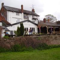 Ross on Wye dog-friendly pub and dog walk, Herefordshire - Dog walks in Herefordshire