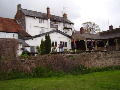 Ross on Wye dog-friendly pub and dog walk, Herefordshire - Driving with Dogs