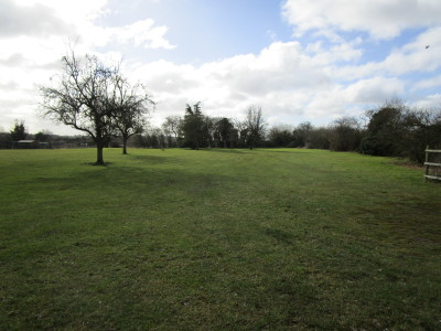 Dog-friendly pub with camping just off the A38 near Bromsgrove, Worcestershire - Driving with Dogs