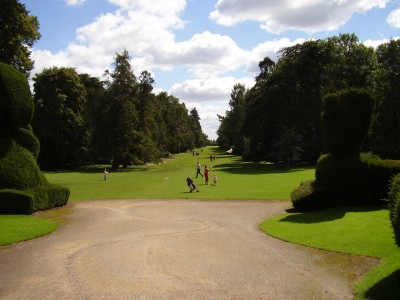 M1 Junction 25 dog walk and cafe near Derby, Derbyshire - Driving with Dogs