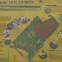 Moor Green local dog walk, Nottinghamshire - Dog walks in Nottinghamshire