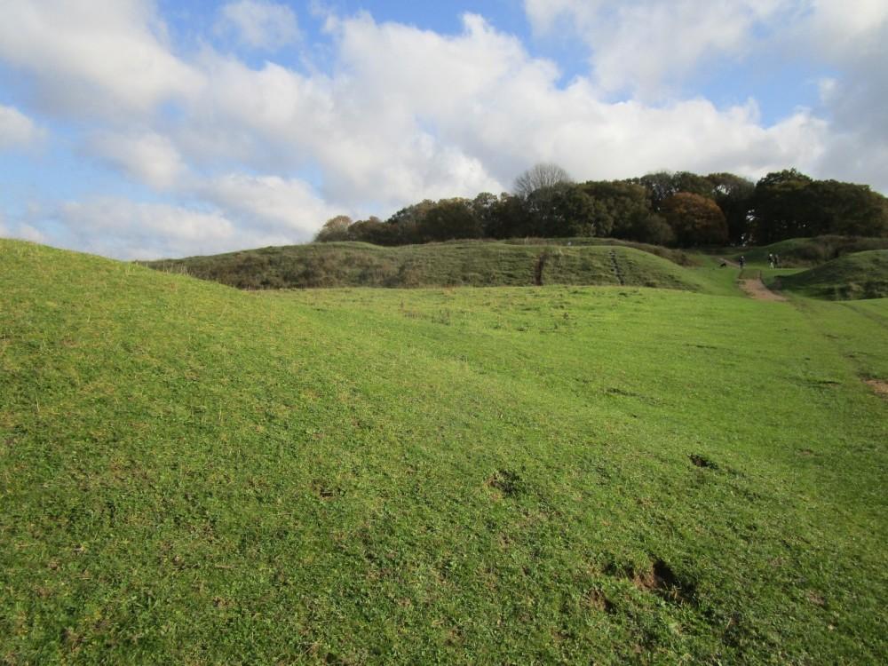 A350 Big dog walk in prehistory, Dorset - IMG_6216.JPG