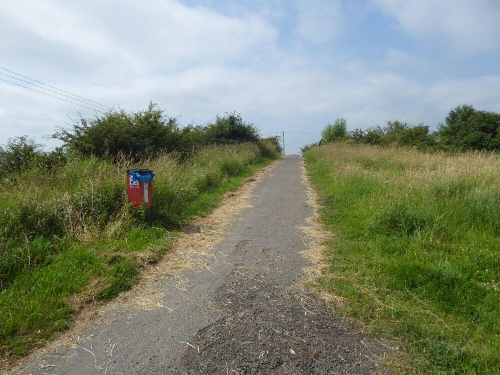 Deerness Valley dog walk, County Durham - P1020450.JPG