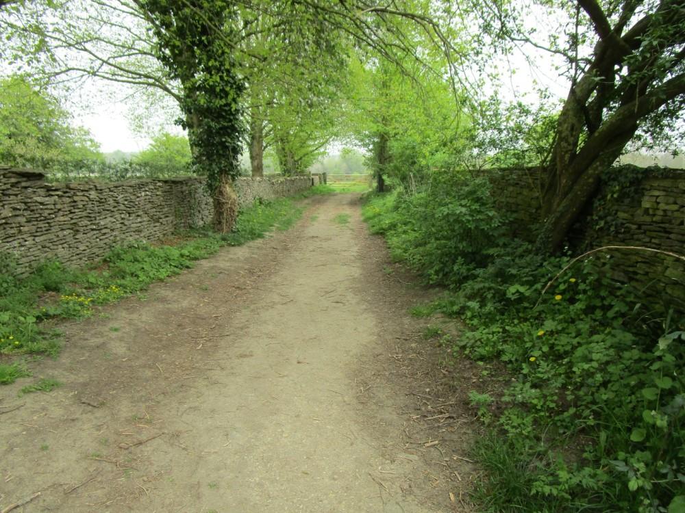 A361 dog-friendly pub and dog walk, Gloucestershire - Gloucestershire dog walk and dog-friendly pub.JPG