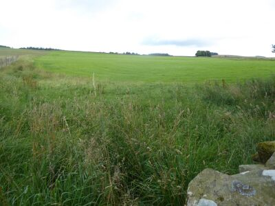 A696 Quiet Historic site with a short walk, Northumberland - Driving with Dogs