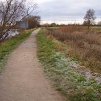 Waterside dog walk near Long Eaton, Nottinghamshire - Dog walks in Nottinghamshire