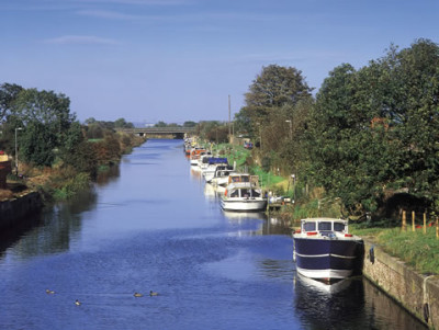 A long and lonely dog walk by the river, Lincolnshire - Driving with Dogs