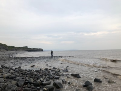 Kilve Beach - dog-friendly, Somerset - Driving with Dogs