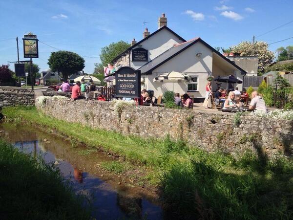 Dog-friendly dining pub and dog walk near Cowbridge, Glamorgan, Wales - Dog-friendly pub and dog walk near Cowbridge.jpg