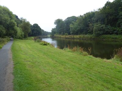 Riverside dog walk with large kids playground, Northumberland - Driving with Dogs