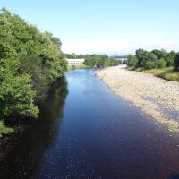 Campsite with excellent dog walk and swimming near Haltwhistle, Northumberland - Northumberland dog walk