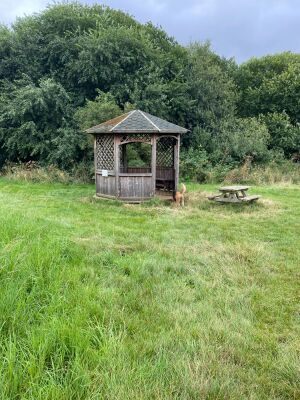 National Herb Centre Walks, Oxfordshire - Driving with Dogs