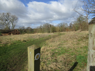 A44 dog walk and dog-friendly pub near Pershore, Worcestershire - Driving with Dogs