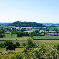 Historic village with a dog-friendly pub and dog walk, Somerset - Somerset dog walks and dog-friendly pubs.png
