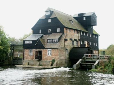 Family attraction and dog walk near Huntingdon, Cambridgeshire - Driving with Dogs