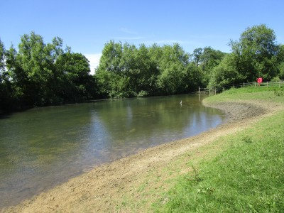 A34 near Oxford dog walk and dog-friendly pub, Oxfordshire - Driving with Dogs