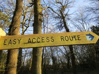 A246 accessible dog walk in Effingham Forest, Surrey - Driving with Dogs