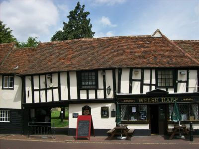 Dog-friendly pub with dog walk, Essex - Driving with Dogs