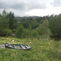 Glebe Nature Reserve, Scotland - 0417B458-2A08-4401-82A2-2FA5F1A94F17.jpeg