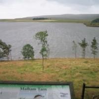 Malham Tarn dog walk, Yorkshire - Dog walks in Yorkshire