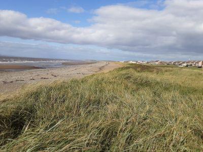 Dog-friendy beach near Maryport, Cumbria - Driving with Dogs