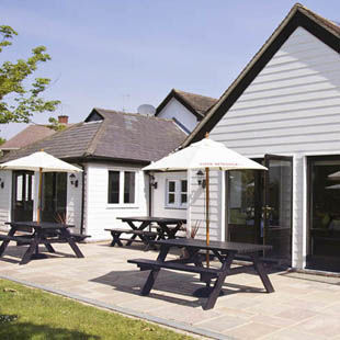 Country pub and an easy-going dog walk, Essex - Driving with Dogs