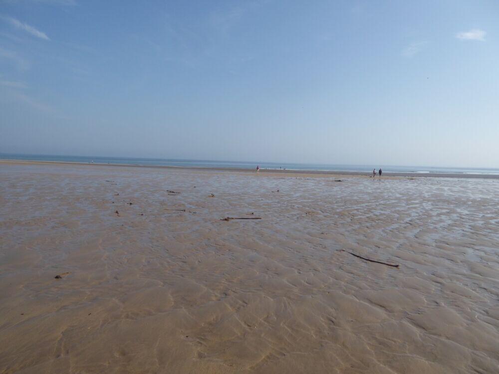 A1 dog walk, beach and dog-friendly pub near Alnick, Northumberland - Northumberland dog-friendly pub and dog walk