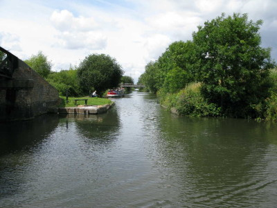 Slough Arm towpath, Berkshire - Driving with Dogs