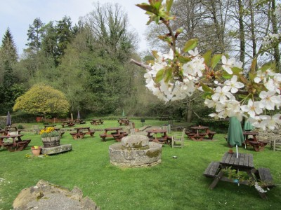 A40 dog-friendly pub and short doggie stroll near Cheltenham, Gloucestershire - Driving with Dogs