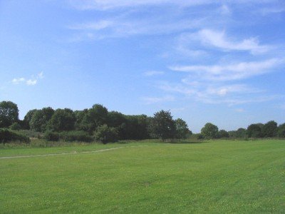 Hornchurch Country Park dog walks, Essex - Driving with Dogs