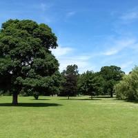 A52 a dog walk in the park, Derbyshire - Dog walks in Derbyshire