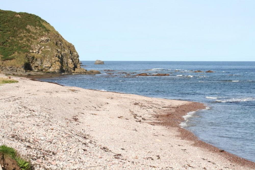 Aberdour dog-friendly beach, Scotland - Dog walks in Scotland