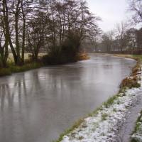 Quiet canalside dog walk with dog-friendly pub and cafe, Warwickshire - Dog walks in Warwickshire