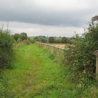 Kilkenny Lane Country Park local dog walk, Oxfordshire - Dog walks in Oxfordshire