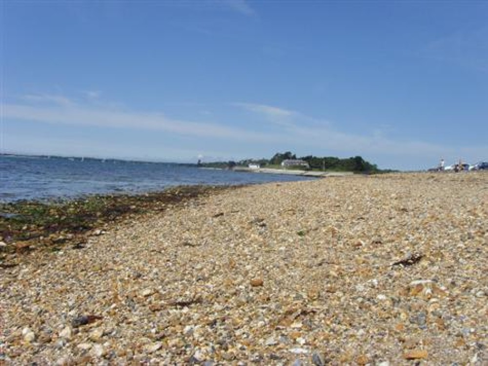 Country Park dog walk and dog-friendly beach, Hampshire - Dog walks in Hampshire