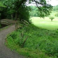 Ladderedge dog walk, Staffordshire - Dog walks in Staffordshire