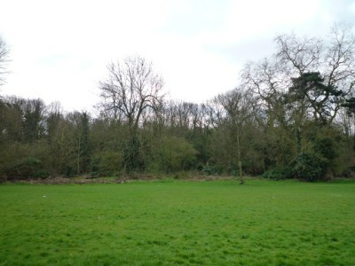 Brent Lodge Park, Greater London - Driving with Dogs