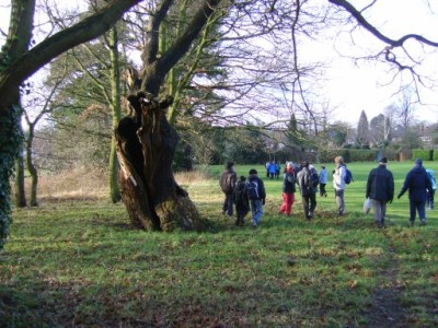 Newhall Valley Country Park dog walk, West Midlands - Driving with Dogs