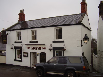 A1 dog walk, beach and dog-friendly pub near Alnick, Northumberland - Driving with Dogs