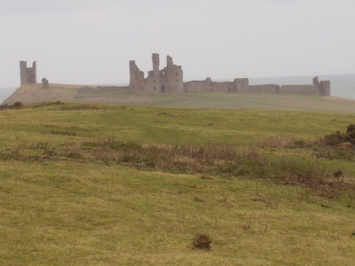 A1 Historic Castle dog walk, Northumberland - Driving with Dogs
