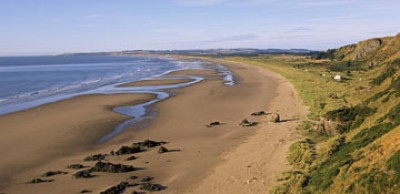 A92 dog-friendly beach near Montrose, Scotland - Driving with Dogs