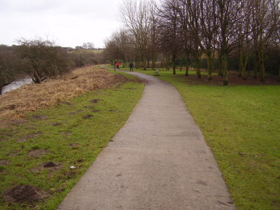 Riverside Park dog walk near Chester-le-Street, County Durham - Driving with Dogs
