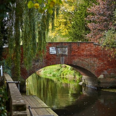 A28 Stour Valley dog walk and dog-friendly pub, Kent - Driving with Dogs