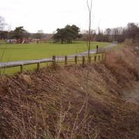 Riverside Park dog walk near Chester-le-Street, County Durham - Dog walks in County Durham