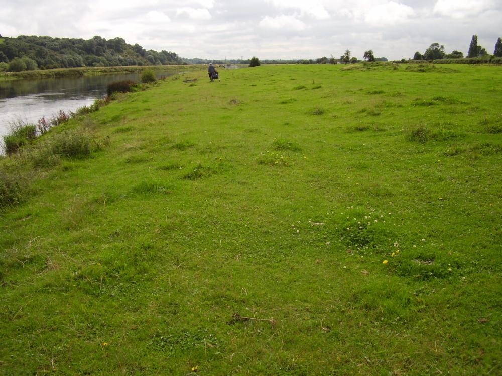 Riverside dog walk and dog-friendly pub, Nottinghamshire - Dog walks in Nottinghamshire