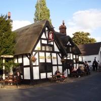 M6 Junction 16 dog walk and dog-friendly heritage pub, Staffordshire
