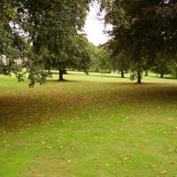 Tatton Park dog walk near Knutsford, Cheshire - Dog walks in Cheshire