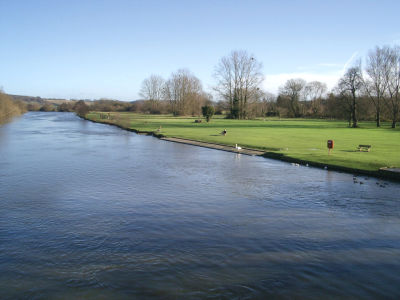 A stroll with the dog by the Thames, Oxfordshire - Driving with Dogs